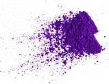 Барвник Фіолетовий, фото 2