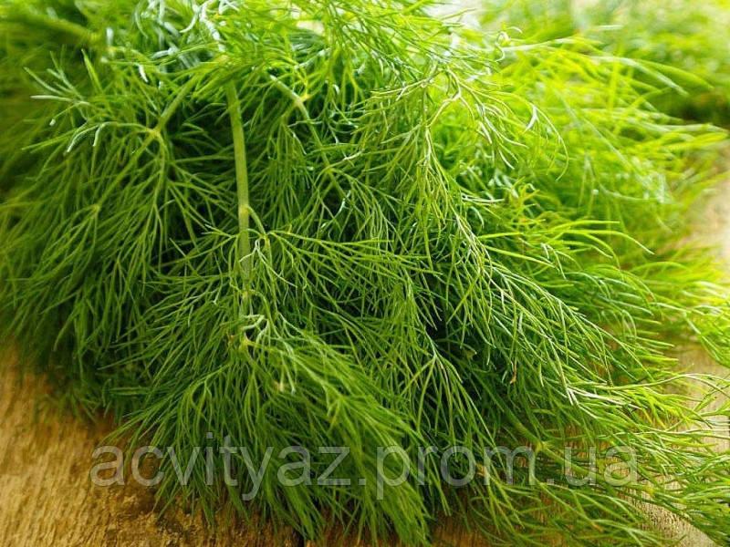 Семена укропа Грин Сливс, 250 грамм