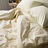 Комплект постельного белья Вдохновение 1.5-спальный Для Евро-подушки (PF017)