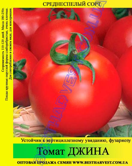 Семена томата Джина 0,5кг