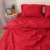 Комплект постільної білизни Натхнення Сімейний з Простирадлом на Резинці для Стандартної подушки (PF029), фото 2
