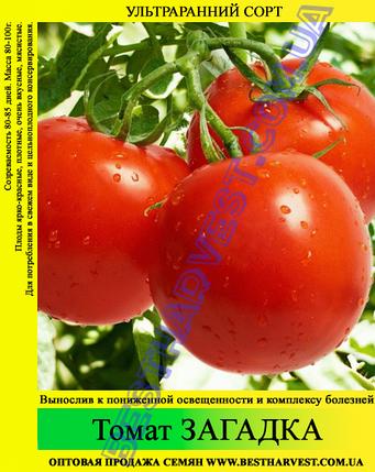 Семена томата Загадка 0,5кг, фото 2