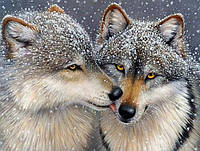 Алмазная вышивка влюбленные волки 50х40 см, полная выкладка, фото 1