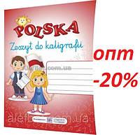 Польська мова (Polski) / Зошит для письма / Бачинська / ПІП