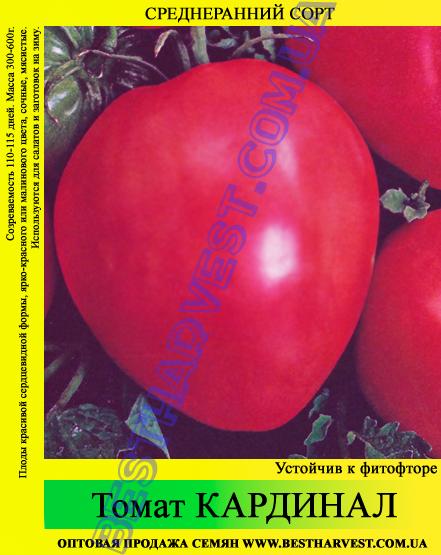 Семена томата Кардинал 100г