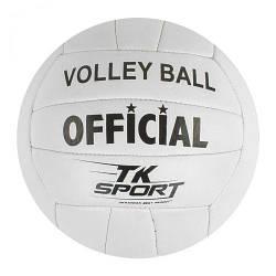 Мяч волейбольный белый GA-2113