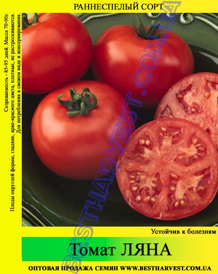 Семена томата Ляна 0,5кг
