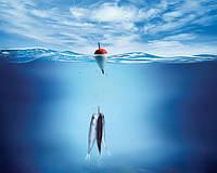 Радиосвязь – залог удачной рыбалки