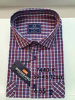 Рубашка 100 % коттон с коротким рукавом - 7440