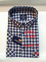 Рубашка 100 % коттон с коротким рукавом - 2710 (regular fit)