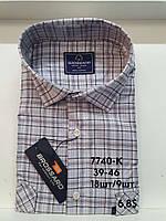 Рубашка 100 % коттон с коротким рукавом - 7740
