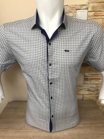 Рубашка короткий рукав Paul Smith c принтом, фото 2