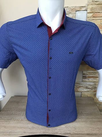 Рубашка короткий рукав Paul Smith c принтом (2704), фото 2