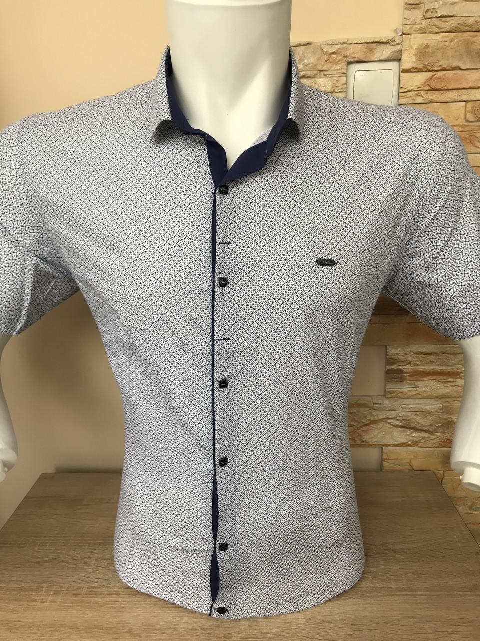 Рубашка короткий рукав Paul Smith c принтом (2704)