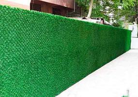 Декоративна огорожа (Зелений паркан)