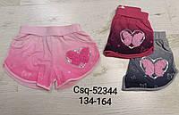 Трикотажные шорты для девочек Seagull, 134-164 рр. Артикул: CSQ52344