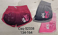 Трикотажные шорты для девочек Seagull, 134-164 рр. Артикул: CSQ52338