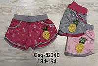Трикотажные шорты для девочек Seagull, 134-164 рр. Артикул: CSQ52340