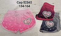 Трикотажные шорты для девочек Seagull, 134-164 рр. Артикул: CSQ52345