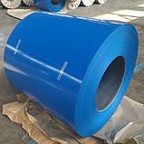 Гладкий  лист с полимерным покрытием толщиной 0,8 мм Италия ARVEDI , ширина 1250 мм ., фото 6