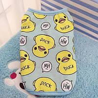 Футболка Ristar одежда для собак голубая размер М  СЖ 1705 М