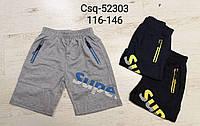 Трикотажные шорты для мальчиков Seagull, 116-146 pp. Артикул: CSQ52303