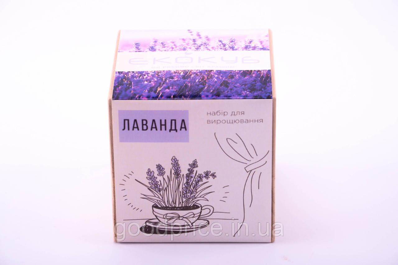 Набор для выращивания декоративных растений Экокуб Лаванда