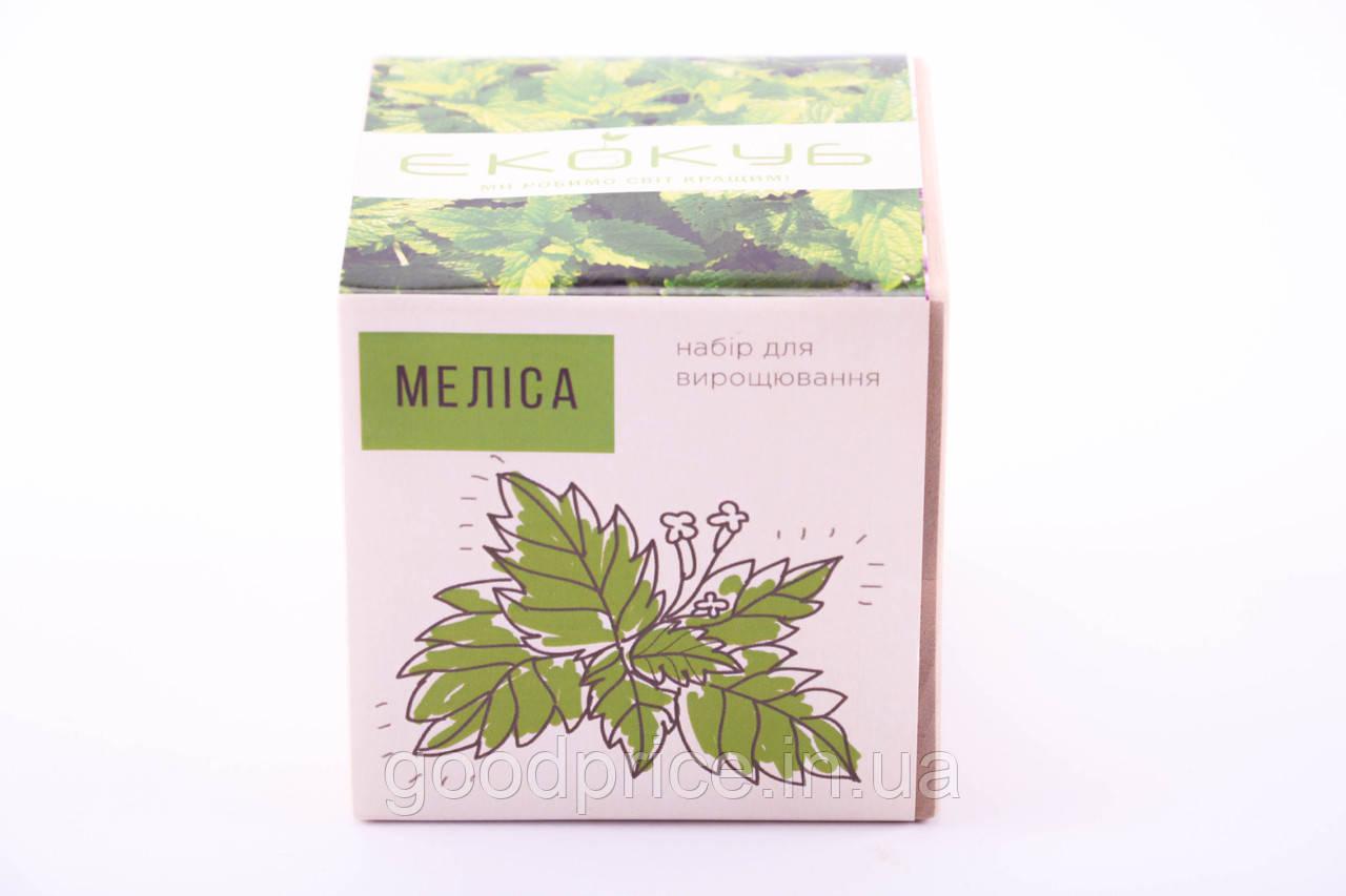 Набор для выращивания декоративных растений Экокуб Мелисса