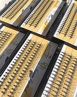 Популярные пучки Nesura QSTY 10D, 8-14мм накладные ресницы Несура вії Eyelash изгиб C
