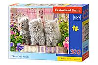 Пазлы Castorland  300шт (030330) 40*29 Три серых котенка