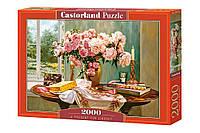Пазлы Castorland 2000шт (200719) 92*68 см ()