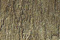 CANYON – декоративне покриття з ефектом ракушняка Elf, фото 1