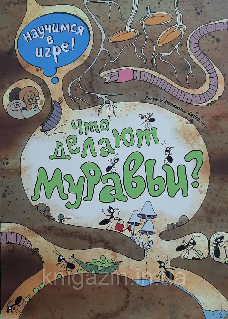 Книга Что делают муравьи