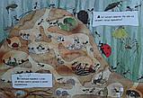 Книга Что делают муравьи, фото 3