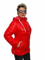 Куртка женская демисезонная (62,64,66)