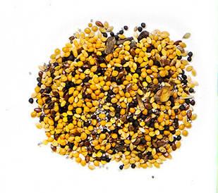 Зерновой корм для муравьев Messor Structor