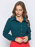 Блузка классического кроя с длинным рукавом, фото 5