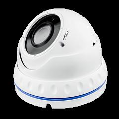 Гибридная Антивандальная камера GV-052-GHD-G-DOA20V-30 1080Р