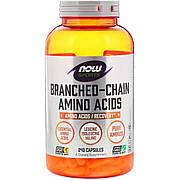 Комплекс Аминокислот с Разветвлёнными Цепями, Branched Chain Amino Acids, Now Foods, 240 капсул