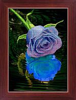 Алмазная мозаика 5D Lasko Голубая роза (5D-033) 35 х 46 см