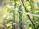 Композитна опора для рослин, д. 7 мм, довжина 1,2 м LIGHTgreen, фото 5
