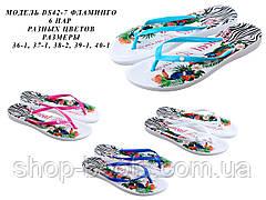 Женские вьетнамки оптом Gipanis. 36-40рр. Модель DS 42 - 7 фламинго
