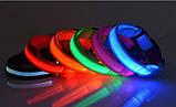 Ошейник LED светящийся узкий для небольших собак и кошек 0.5 м ave, фото 3