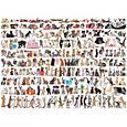 Пазл EuroGraphics Мир кошек, 1000 элементов (6000-0580), фото 2