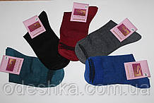 """Шкарпетки жіночі """"Виора"""" бавовна"""