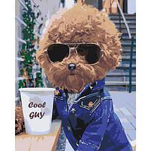 Картина по номерам. «Cool guy» (КНО4072)
