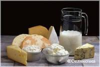 Биопрепарат-очиститель сточных вод от молока Дэйри Трит 3,8 л концентрат 1х200 ТМ MICROZYME (США)