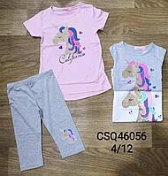 Комплект для девочек Seagull оптом, 4-12 лет. Артикул: CSQ46056