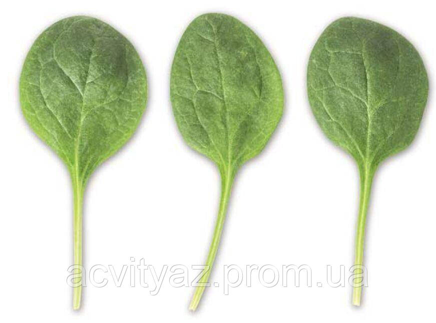 Семена шпината Тукан F1, 1 000 000 семян
