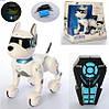 Интерактивная игрушка робот собака на радиоуправлении c голосовым управлением A001, фото 4